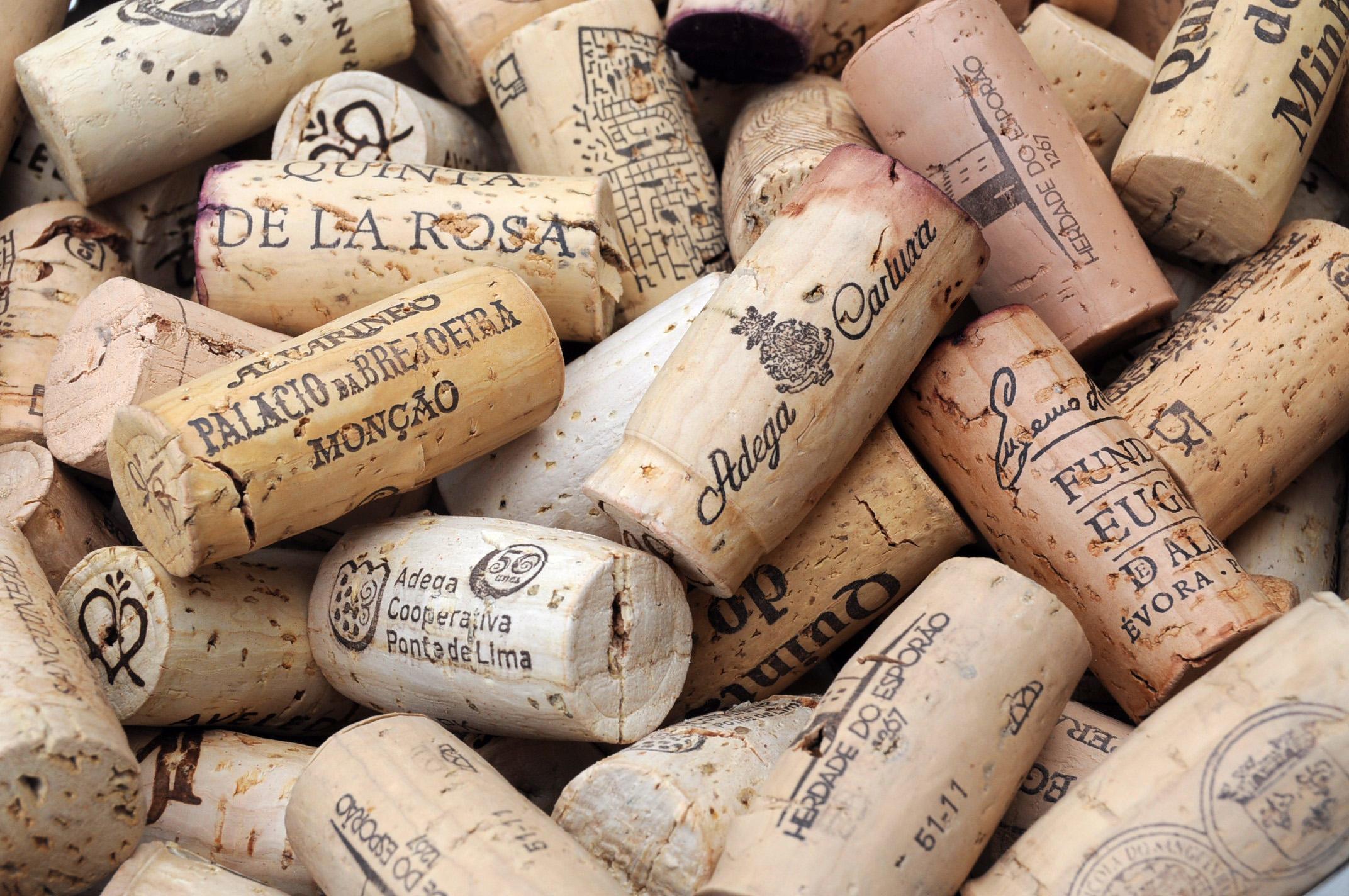 Cork secrets | Salt of Portugal