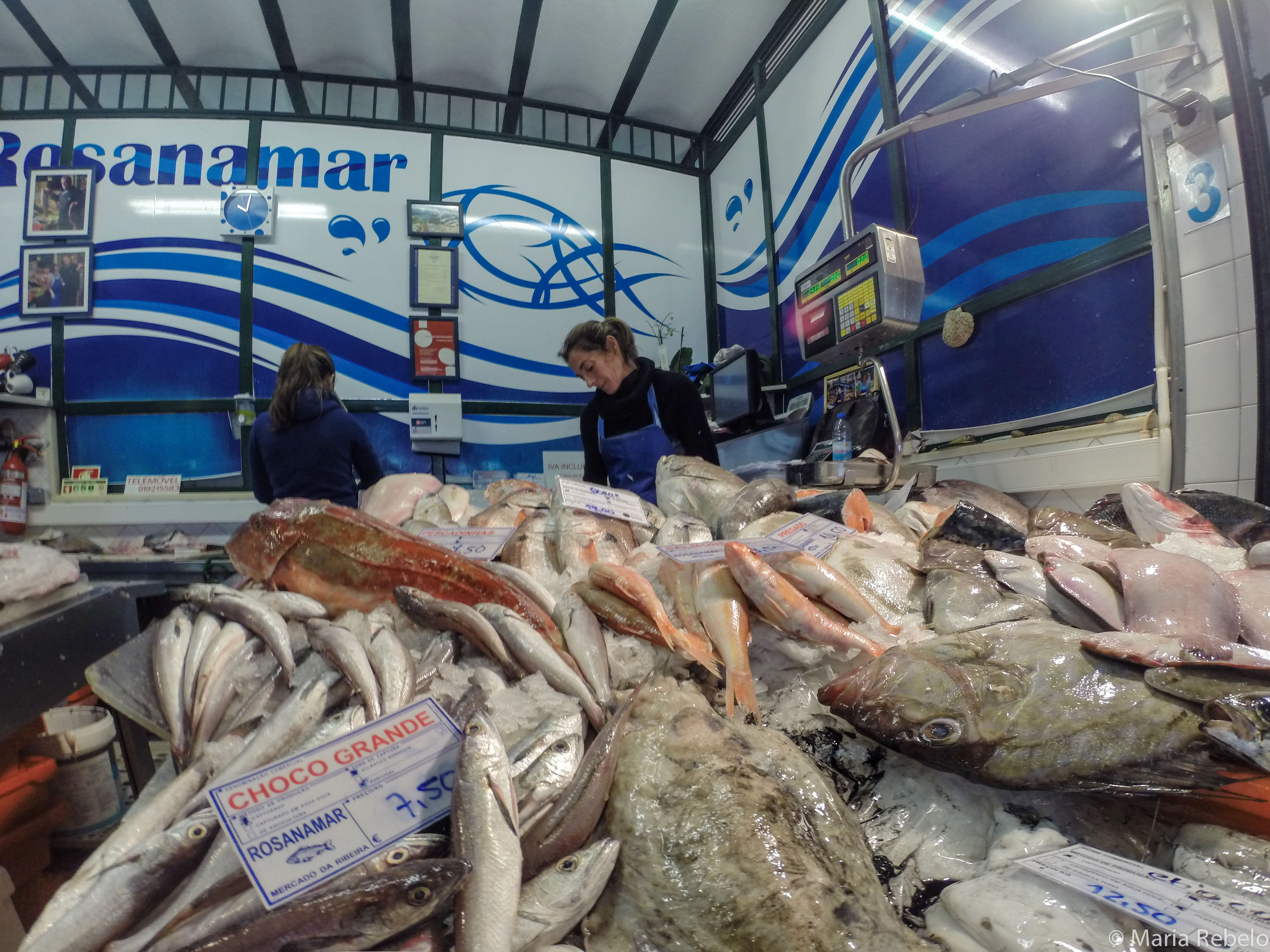 Fish and seafood salt of portugal for King fish market