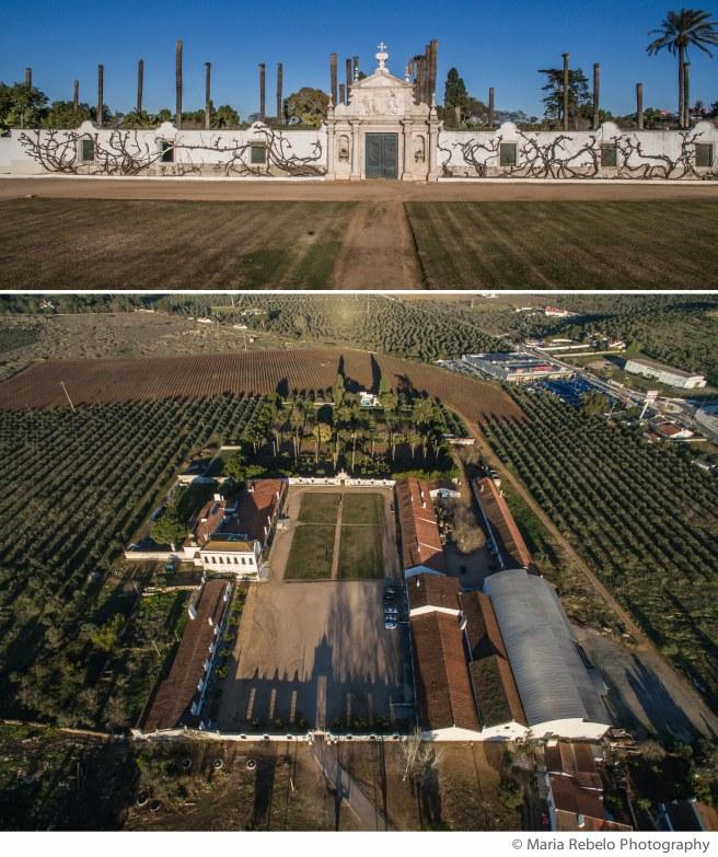 Quinta D. Maria Winery