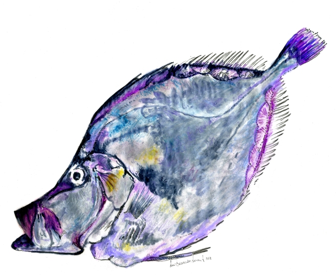 RBD_Desenho Peixe Galo